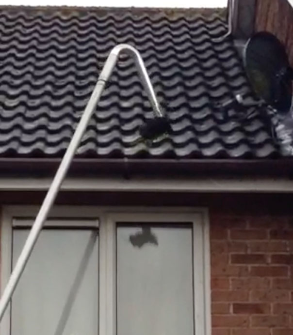 Gutter Cleaning Sevenoaks